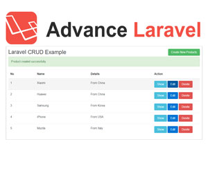 Advance Laravel CRUD Example