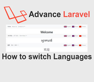 How to switch languages in Advance Laravel
