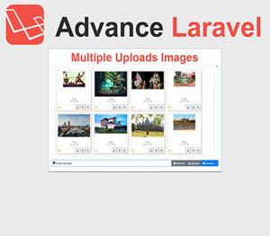 Upload Multiple Images in Advance Laravel
